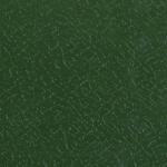 Olive Green (12B27)